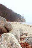 Autumn cliff in Orlowo, Gdynia Poland Stock Photography