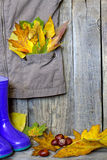 Autumn clothing with leaves on wooden boards Royalty Free Stock Photography