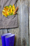 Autumn clothing with leaves on wooden boards Royalty Free Stock Photos