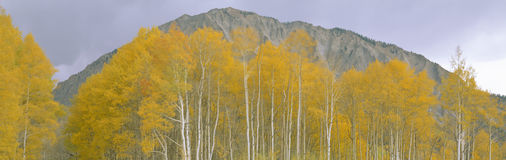 Autumn clouds at Kebler Pass, Gunnison National Forest, Colorado Royalty Free Stock Photos