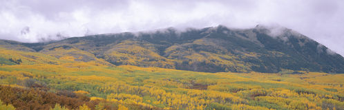 Autumn clouds at Kebler Pass, Gunnison National Forest, Colorado Royalty Free Stock Images