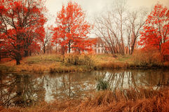 Autumn cloudy landscape in pictorial tones Stock Photography