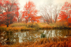 Autumn cloudy landscape in pictorial tones Royalty Free Stock Photos