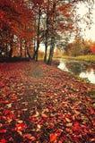 Autumn cloudy landscape, vintage tones processing Stock Images