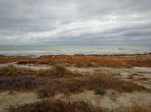 Autumn coast of the Caspian Sea. Kazakhstan stock photo