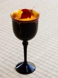 Autumn cocktail Royalty Free Stock Photos