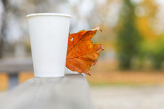Autumn, coffee cup, tea, hot drink,. Blurred background autumn maple leaf tree with a steaming hot cup of coffee of tea with space for text stock photo