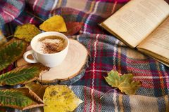 Free Autumn Coffee Cup With Cozy Blanket, Fall Deco Warm Home Weekend With Coffee Cup, A Book And Dried Leaves Royalty Free Stock Image - 157760976