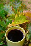 Autumn Coffee With Oak Leaves Royalty-vrije Stock Afbeelding