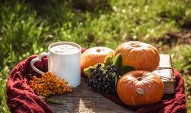Autumn coffee. Pumpkin latte. Coffee in the autumn garden. Stock Photos