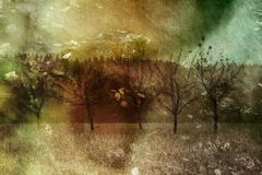 Autumn Collage. Creative autumn collage from leaves, trees and other autumn elements Royalty Free Stock Images