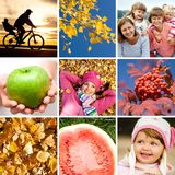 Autumn collage Royalty Free Stock Image