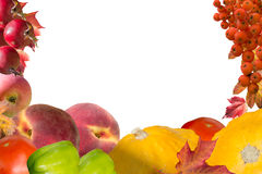 Autumn collage card with fruits and leaves Stock Photo
