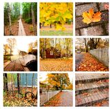 Autumn collage showing different autumn landscapes Royalty Free Stock Photos