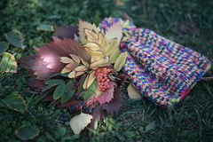 Autumn collage. Symbols of autumn knitted cap, yellow leaves, rowan branch royalty free stock photos