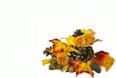 Autumn Collection Stock Photo