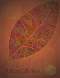 Autumn Collection advertising Poster Royalty Free Stock Images