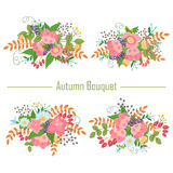 Autumn collection of bouquets of pink flowers and berries . Vect Stock Photos