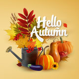 Autumn collection. Hello Autumn Typographical Background With autumn leaves, vegetables and flowers Royalty Free Stock Photography