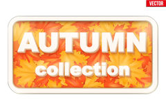 Autumn Collection inscription Royalty Free Stock Image