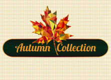 Autumn collection Stock Photography