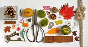 Autumn Collection  Mockup objects Royalty Free Stock Images