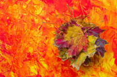 Autumn collection. A pale of autumn leaves on colored background Stock Image