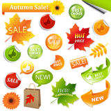 Autumn Collection Sale Elements Royalty Free Stock Photo