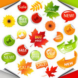 Autumn Collection Sale Elements With-Bladeren Stock Afbeelding