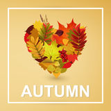 Autumn collection. Autumn Typographical Background With autumn  color leaves Stock Images