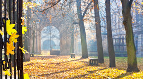 Autumn colonade with a gateway Stock Images