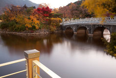 Autumn color. Bridge in the park with autumn color Stock Photo