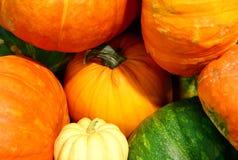 Autumn Color Imagen de archivo libre de regalías