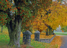 Autumn color. Beautiful fall color on Route 73, PA Royalty Free Stock Photos