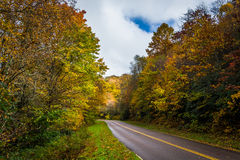 Autumn color along the Blue Ridge Parkway, near Blowing Rock, No Stock Image
