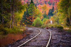 Autumn color along a railroad track in White Mountain National F Royalty Free Stock Image
