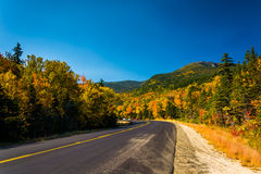 Autumn color along a road in White Mountain National Forest, New Stock Images