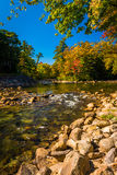 Autumn color along the Saco River in Conway, New Hampshire. Stock Images