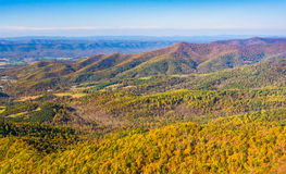Autumn color in the Appalachian Mountains, seen from Skyline Dri. Ve in Shenandoah National Park, Virginia Royalty Free Stock Image