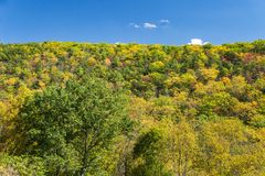Autumn Color in the Blue Ridge Mountains royalty free stock image