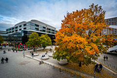 Autumn color and buildings at Alexanderplatz, in Mitte, Berlin, Royalty Free Stock Image