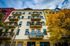 Autumn color and buildings along Dunckerstraße, in Prenzlauer B Stock Photos