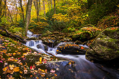 Autumn color and cascades on Stoney Fork, near the Blue Ridge Pa Stock Photo