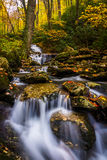 Autumn color and cascades on Stoney Fork, near the Blue Ridge Pa Stock Photography
