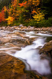 Autumn color and cascades on the Swift River, along the Kancamag Stock Images