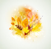 Autumn color composition Royalty Free Stock Photography