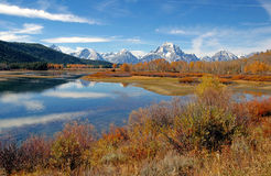 Autumn color in Grand Teton, Wyoming Royalty Free Stock Photo