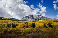 Autumn Color i San Juan och Rocky Mountains av Colorado arkivfoton