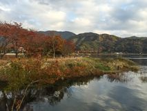 Autumn Color In Lake Kawaguchiko, Japan. Autumn color in lake Kawaguchiko, one of the best autumn-leaf viewing place among the Fuji Five Lakes in Japan Stock Photography