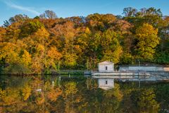Autumn color at Lake Roland at Robert E Lee Park in Baltimore, Maryland.  royalty free stock images
